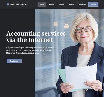 Accountant 3