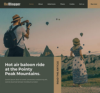 Blogger 3
