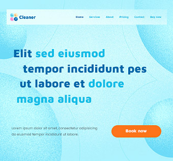 Cleaner 3