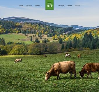 Eco Beef