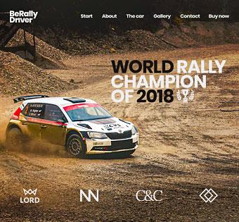 Rally Driver
