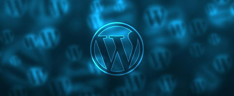 2 Why Should You Use a Premium WordPress Theme?