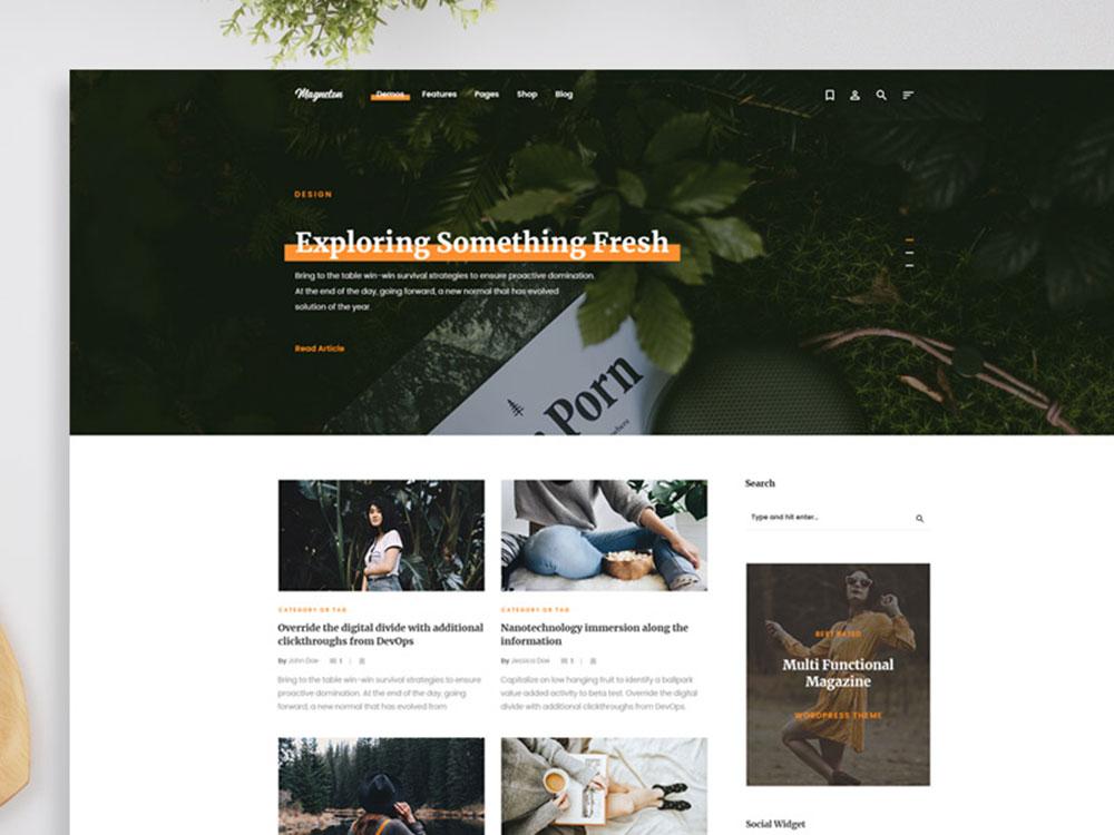 blog-website3