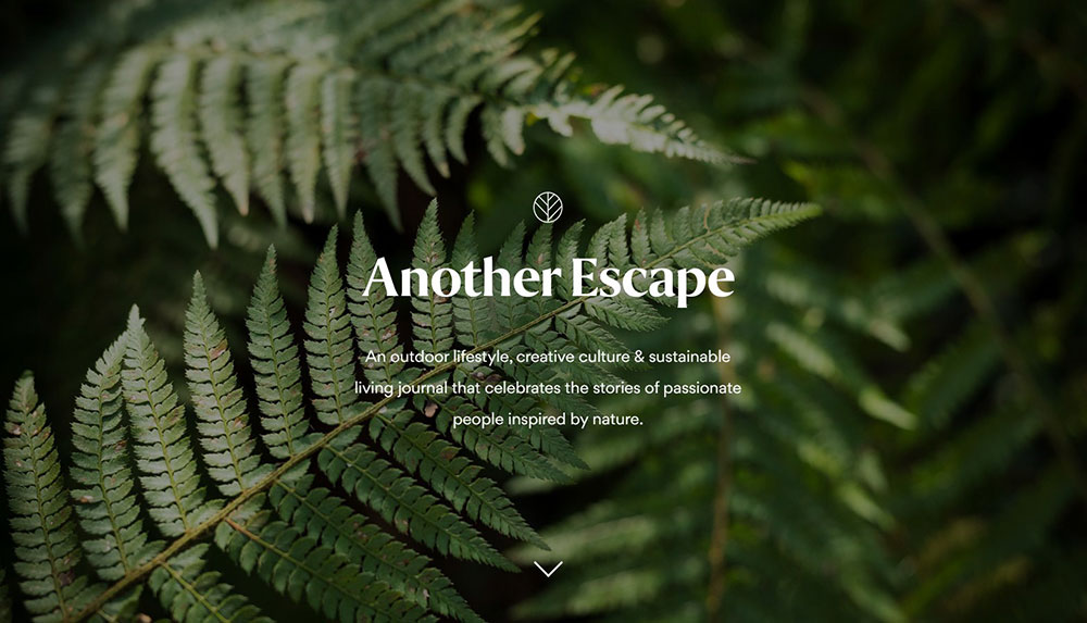 Another-Escape
