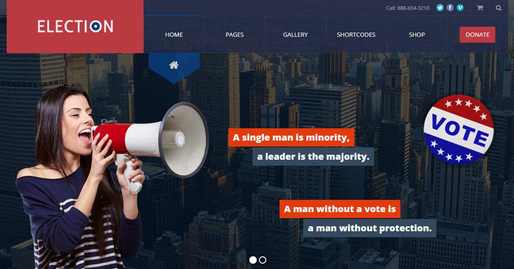 election-promises11